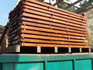Beech timber 15
