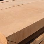 Beech timber 17