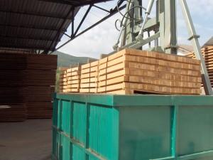 Beech timber 21