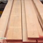 Beech wood 5