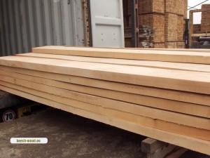 Beech wood 4