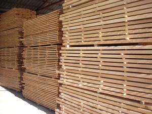 drewna bukowego 8