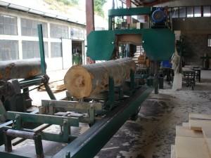 drewna bukowego 5